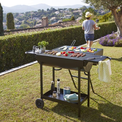interdiction barbecue charbon