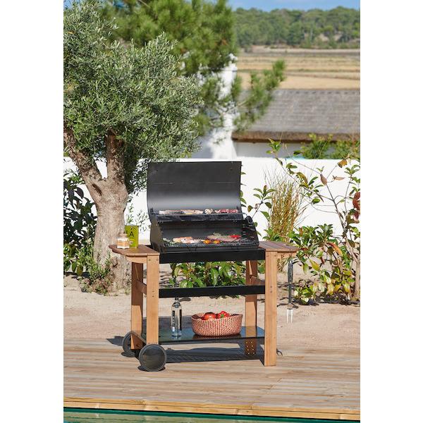 barbecue charbon hyba k55