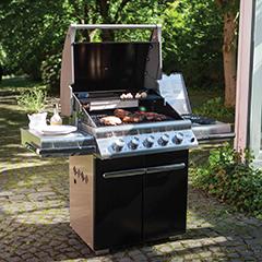 barbecue napoleon charbon de bois