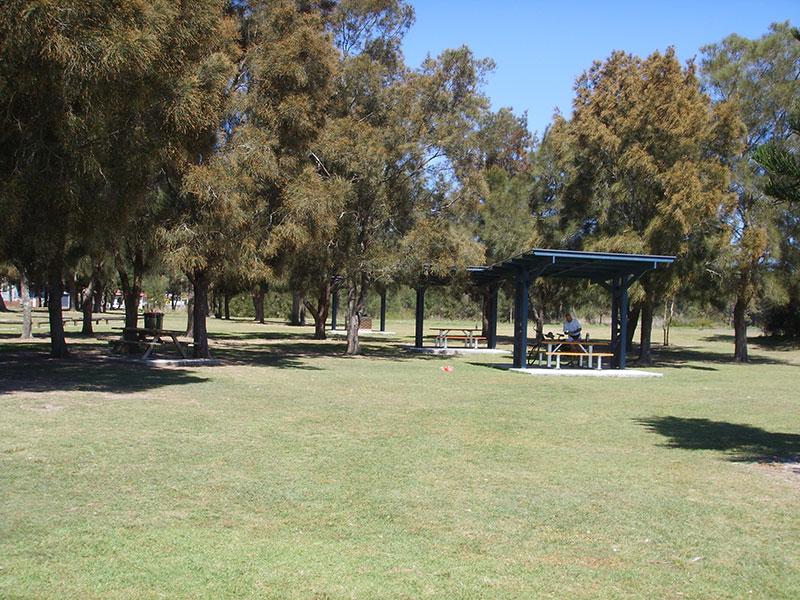barbecue in park near me