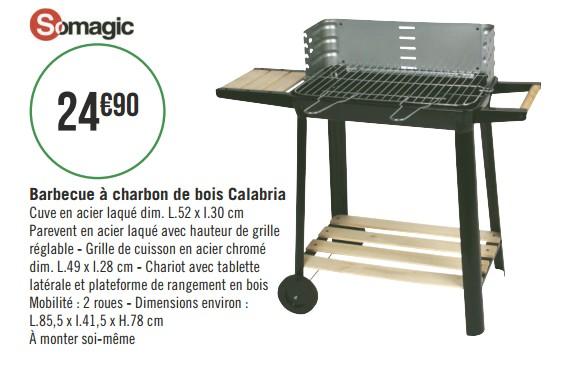 barbecue charbon geant casino