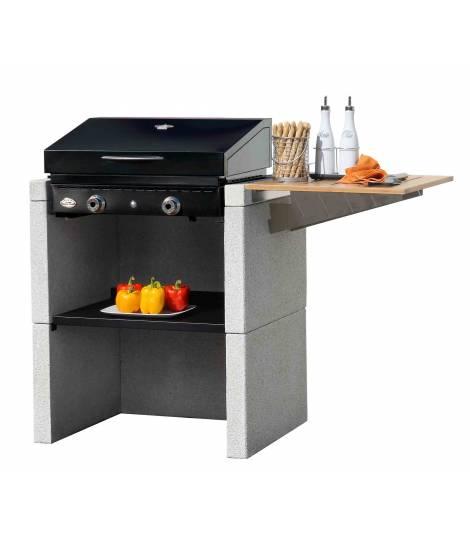 barbecue charbon ou plancha