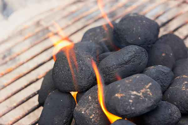 barbecue charbon ou briquettes