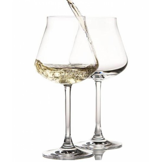 le verre à vin blanc