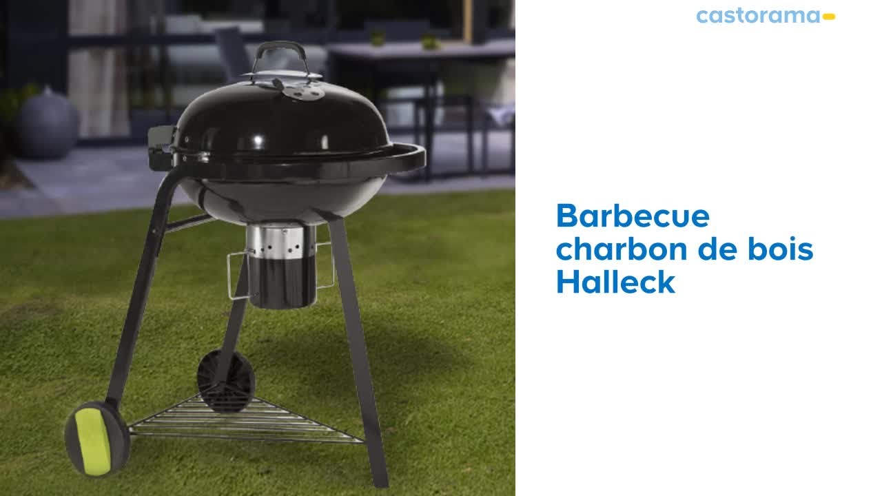 barbecue charbon weber castorama
