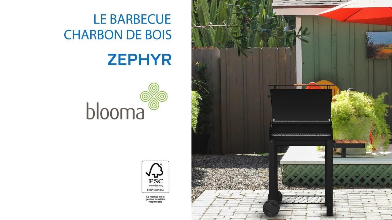barbecue charbon de bois blooma zelfo