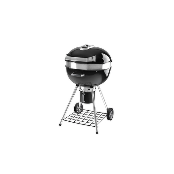 barbecue charbon napoleon avis