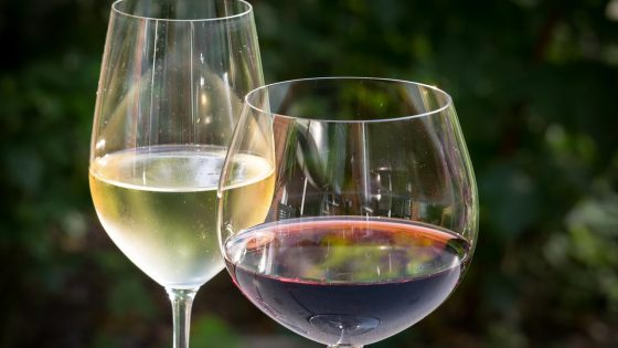 difference verre vin rouge blanc