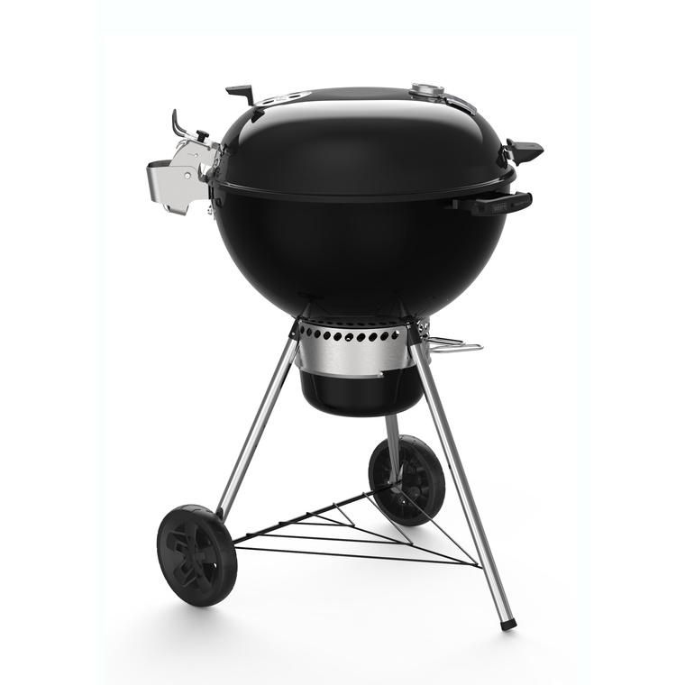 barbecue charbon botanic