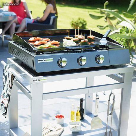 barbecue electrique le bon coin