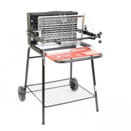 barbecue electrique vertical raymond