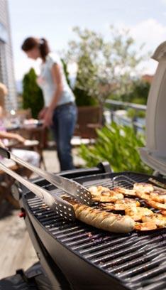 barbecue electrique truffaut